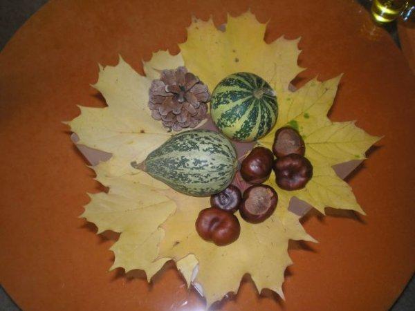 moje podzimní dekaroce