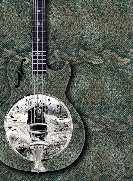 Hadí kůže kytara