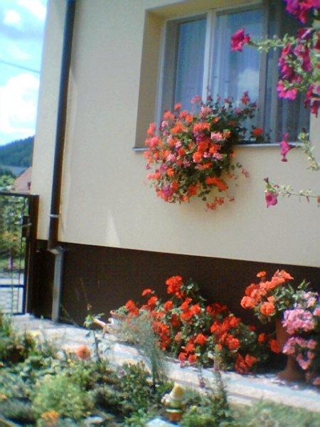 milé přivítání květinami