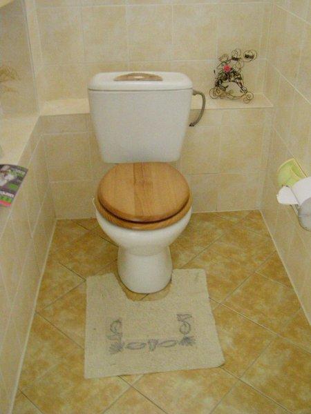 naše wc 1