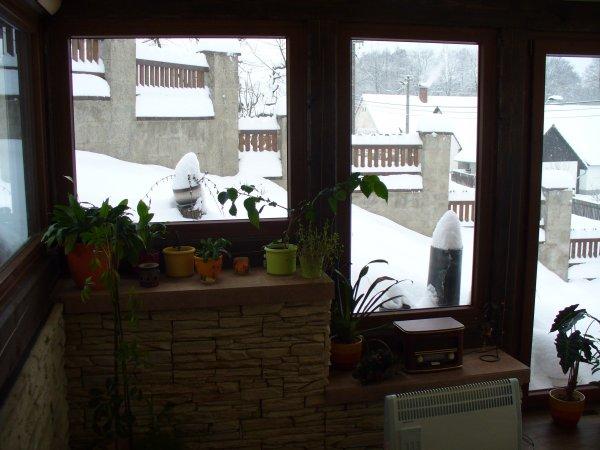 Zimní zahrada - ostatní