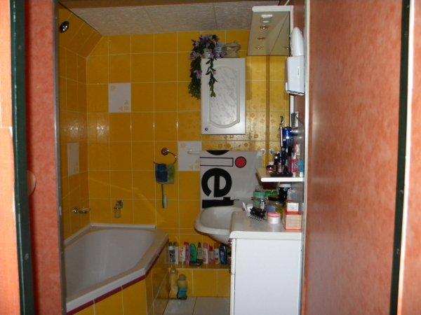 koupelnicka skromna