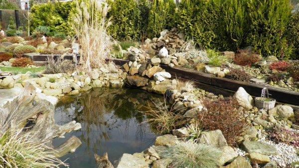 Jezírko - zahrada