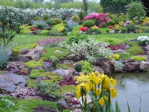 zahrada v dešti