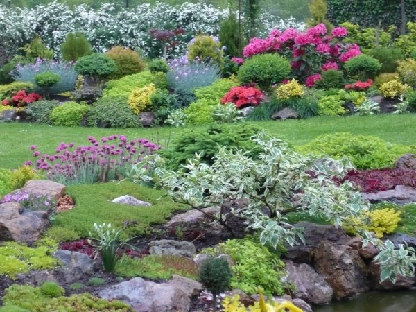 zahrada v dešti 2
