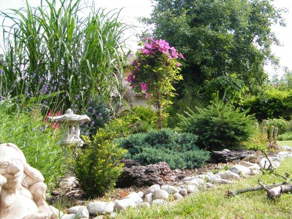 červen na zahradě