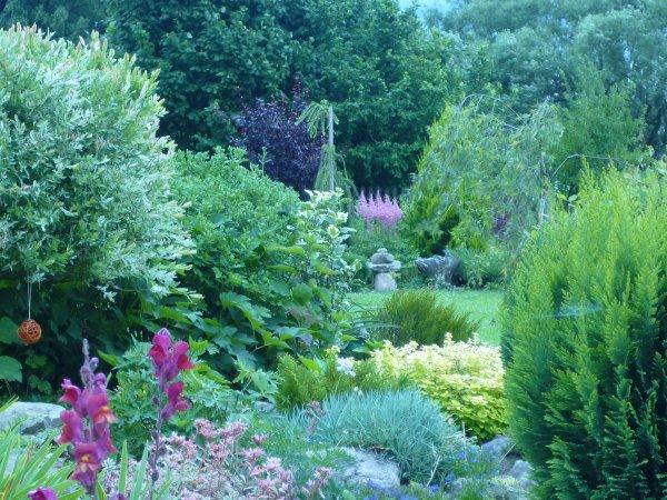 pohledy do zahrady