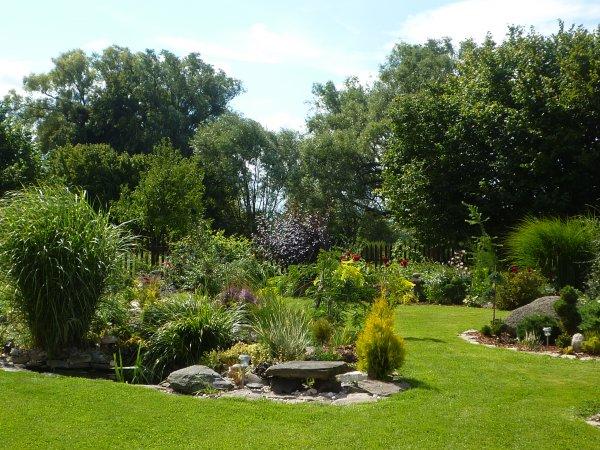 letní zahrada
