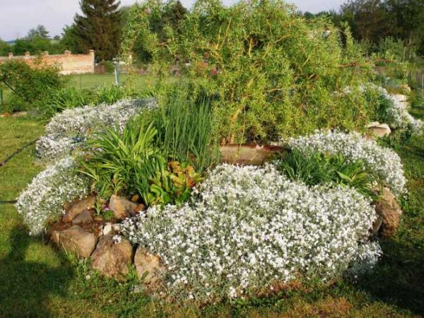 Parádní zahrada