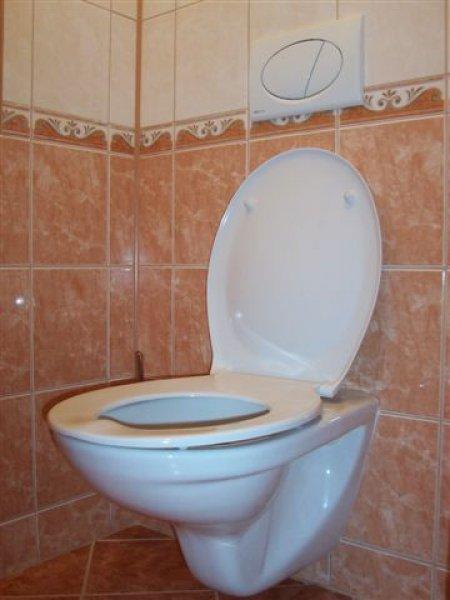 obklady a dlažba-toaleta