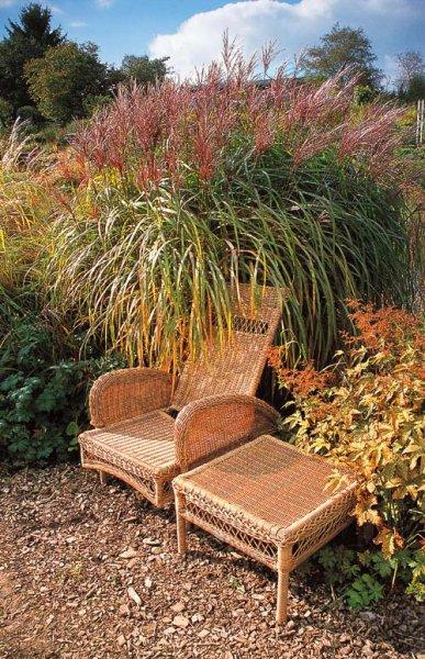 Sezení zahrada