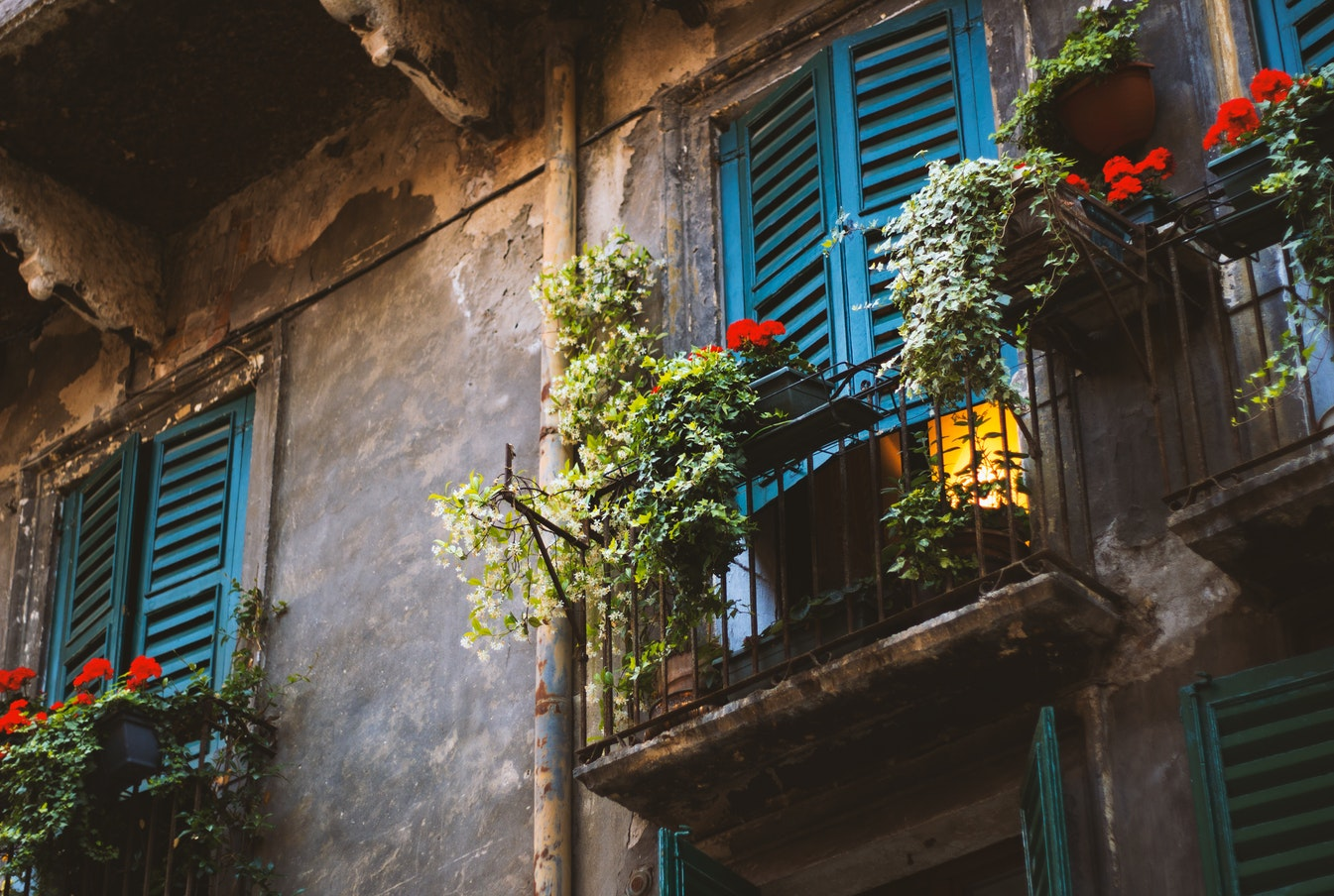 K balkonu snů s balkonovými květinami