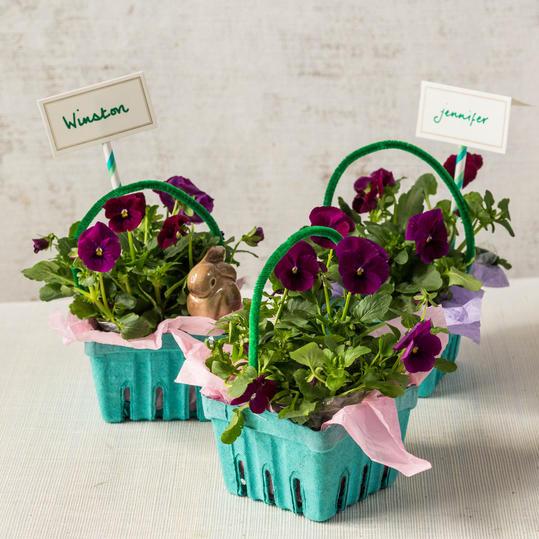 I obyčejné květiny v květináči mohou posloužit jako plnohodnotná jarní a velikonoční dekorace. Stačí vám k tomu hezký květináč nebo nádobka, kam umístíte již používaný květináč. Fantazii se meze nekladou.
