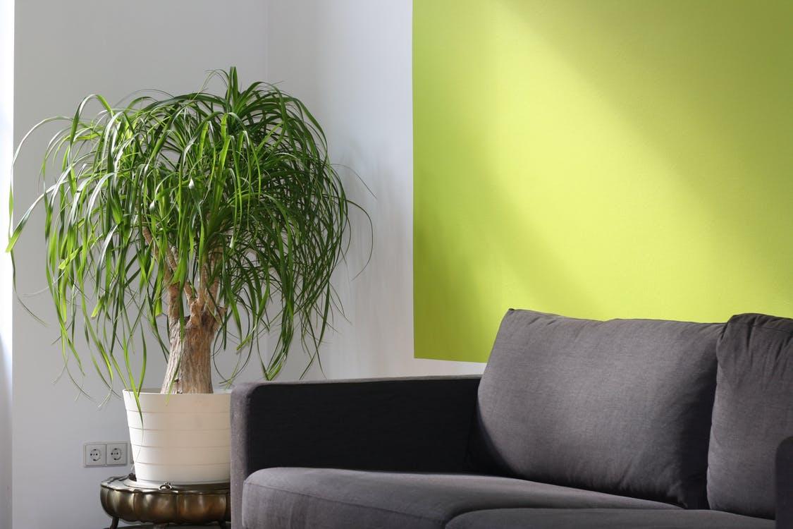 interiér barvy
