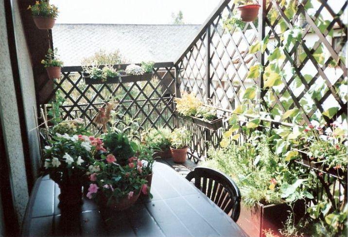 Zahrady našich čtenářů - 1. díl!