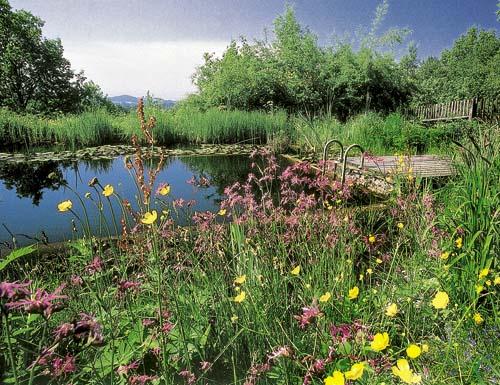 Zahrada přírodě otevřená