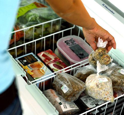 Rady pro údržbu ledničky a mrazničky