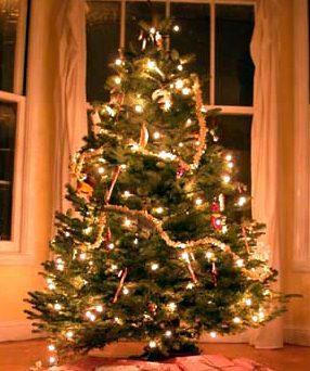 Soutěž o nejhezčí vánoční stromeček 2010