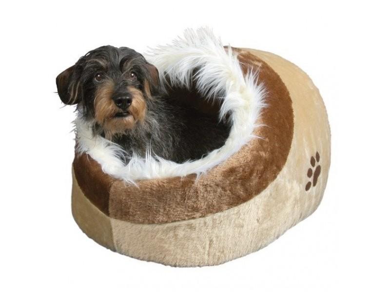 Jak vybrat ideální pelíšek pro psa do bytu a do domu?