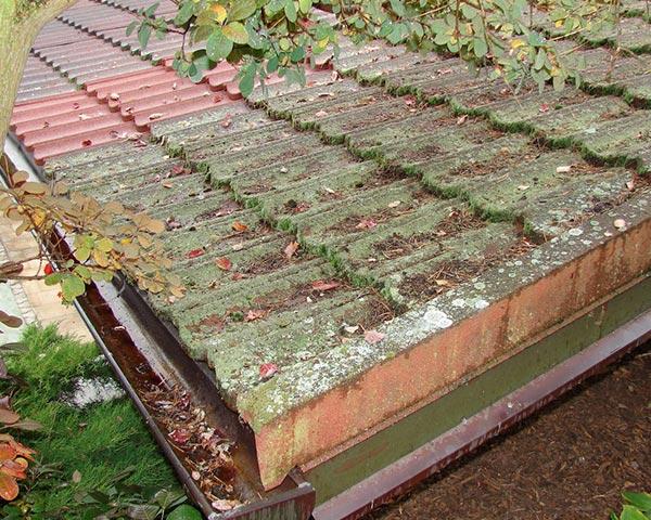 Střecha jako nová – čistíme střešní krytinu od mechu