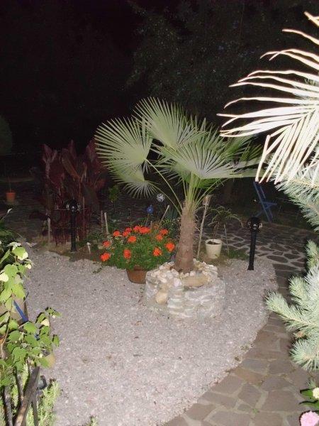 naše terasa večer