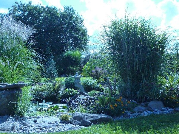 kvetoucí trávy