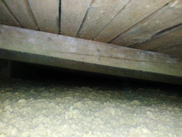 Zateplení trámového strop