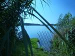 Tálínský rybník