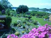 letní pohled na zahradu